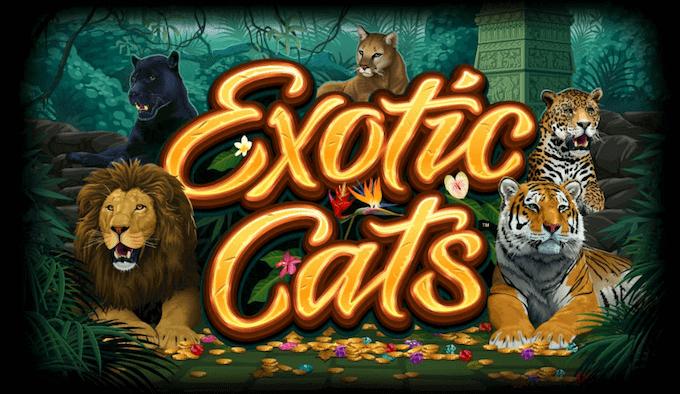 Spil Exotic Cats hos LeoVegas